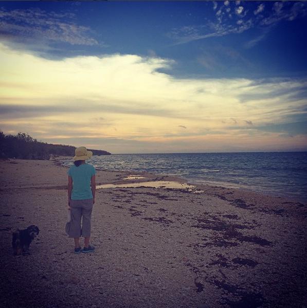 海辺のお散歩