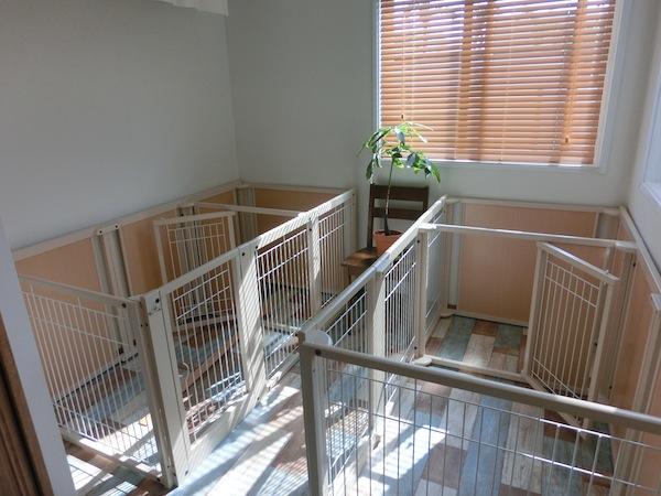 小型中型犬のお部屋