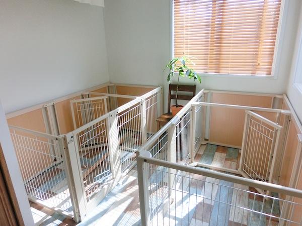 超小型、小型犬、中型犬までのお部屋